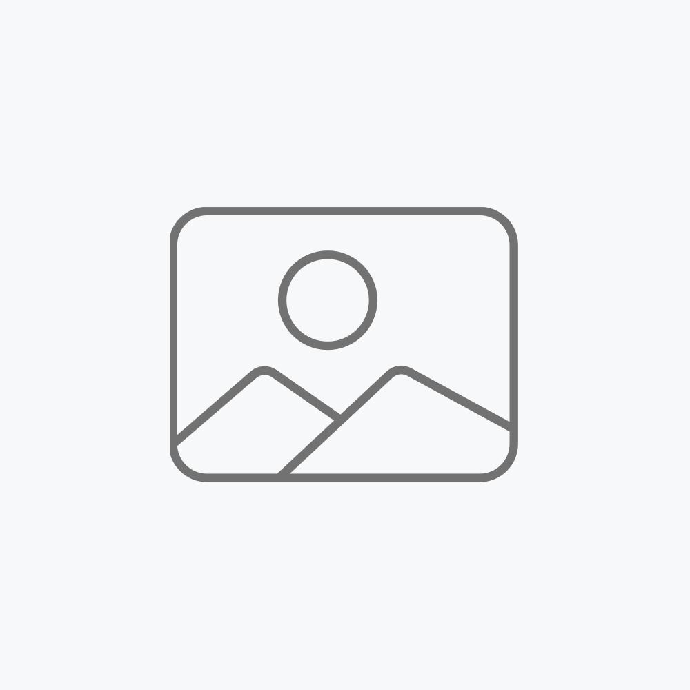 """Bocina de 2"""" (5 cm) 1,5 W PMPO"""